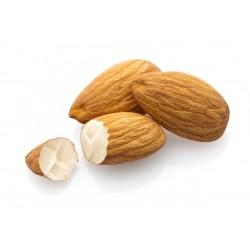 TPA - Toasted Almond...